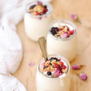 questa immagine rappresenta lo yogurt vegetale fatto in casa ricetta di pasticciandoconlafranca